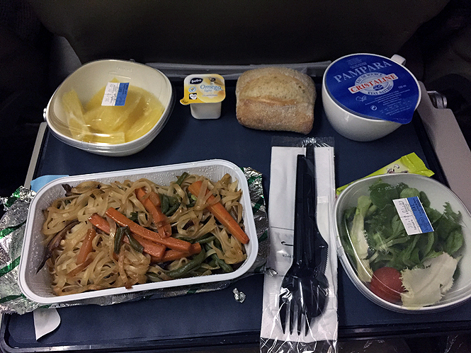 Airplane in flight Food Iberia vegetarian