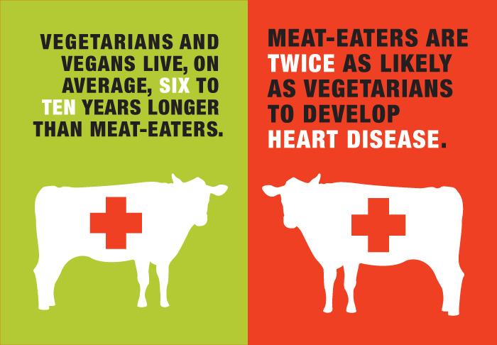 vegan versus nonvegan vegan chao