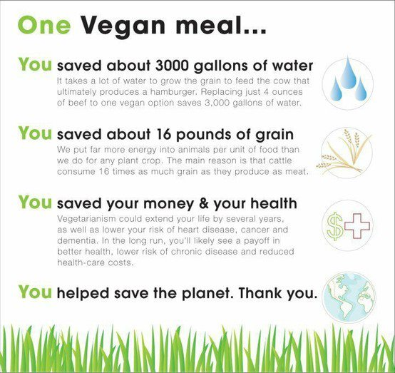 vegan water usage meat chart