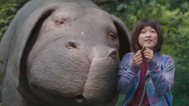okja vegan chao review